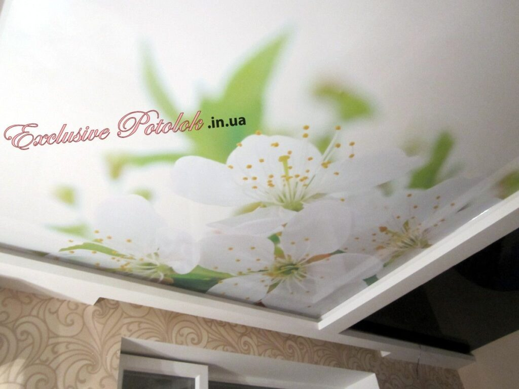 Натяжные потолки с фотопечатью Кривой Рог Натяжні стелі з фотодруком Кривий Ріг